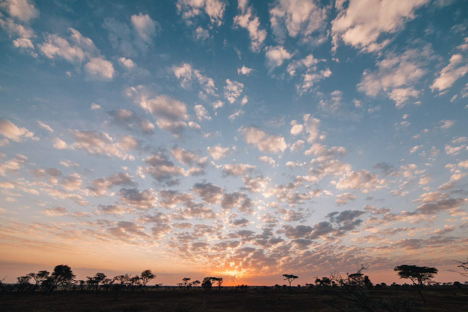 serengeti-sunrise-4