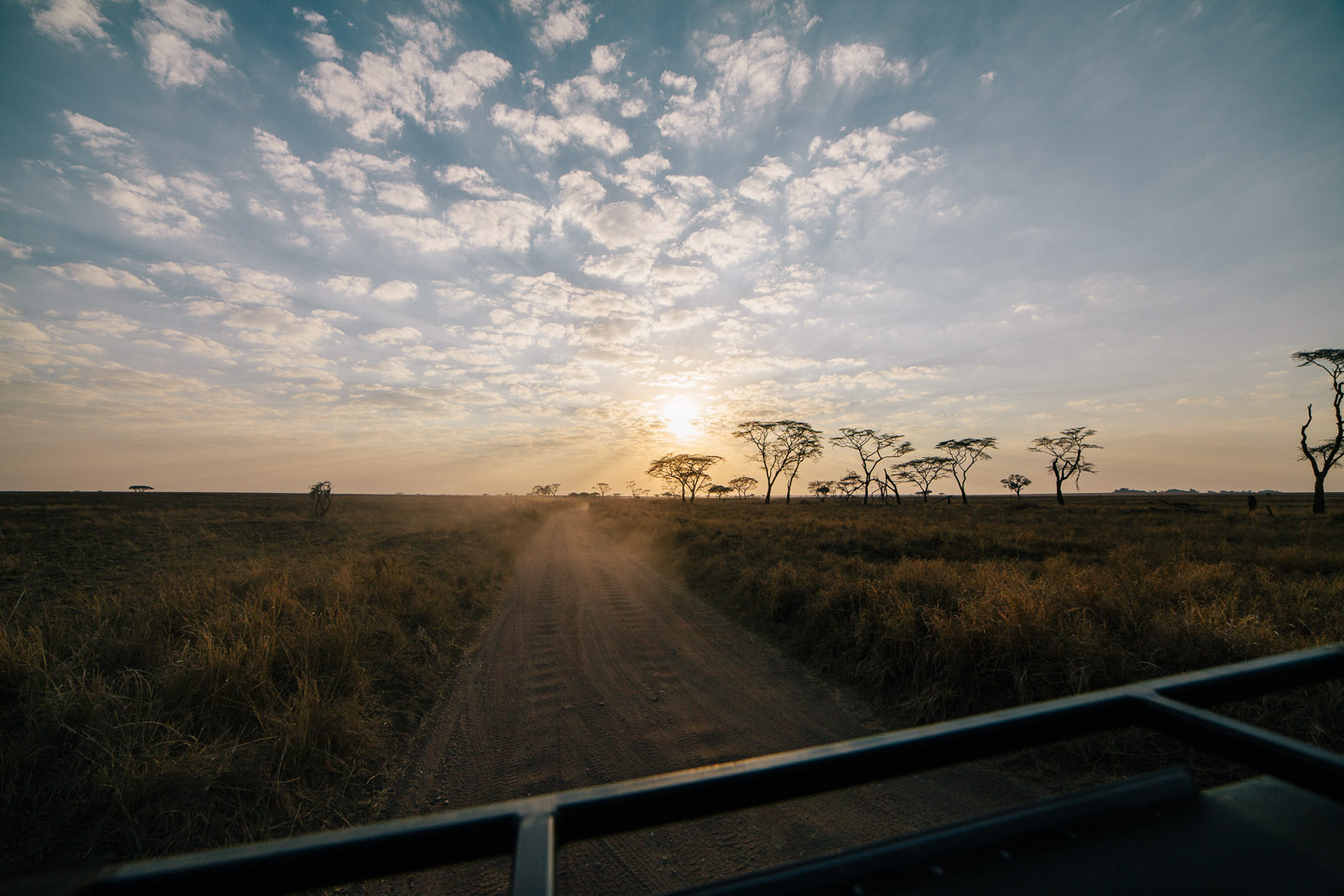 serengeti-sunrise-5