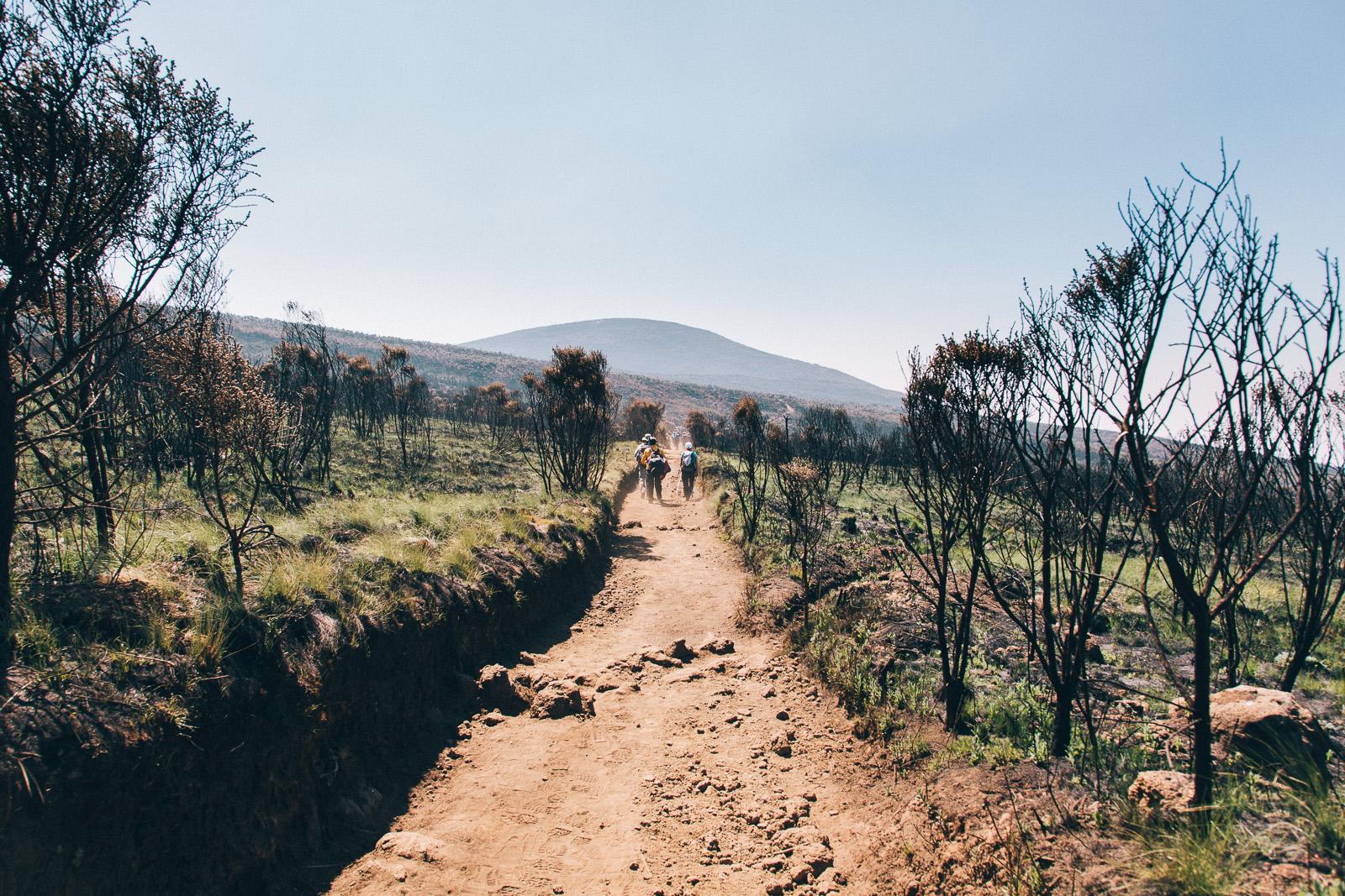 kilimanjaro-marangu-burned
