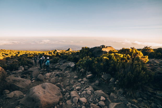 Mount Kilimanjaro – Part 4 – Marangu Route Descent