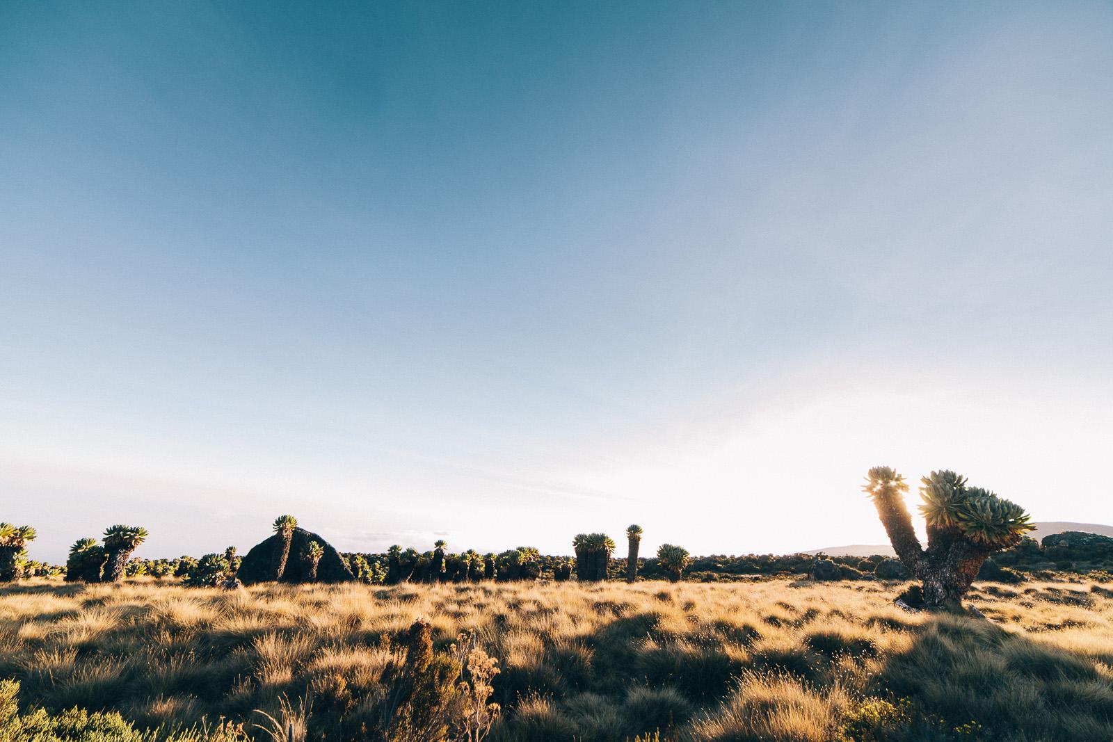 kilimanjaro-marangu-sunset