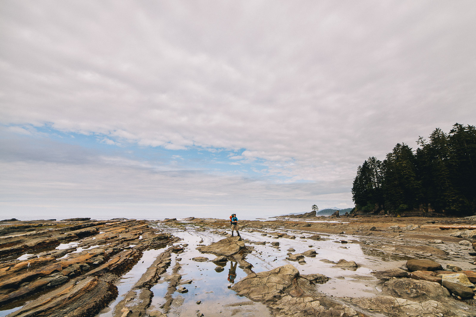west coast trail rocks shoreline