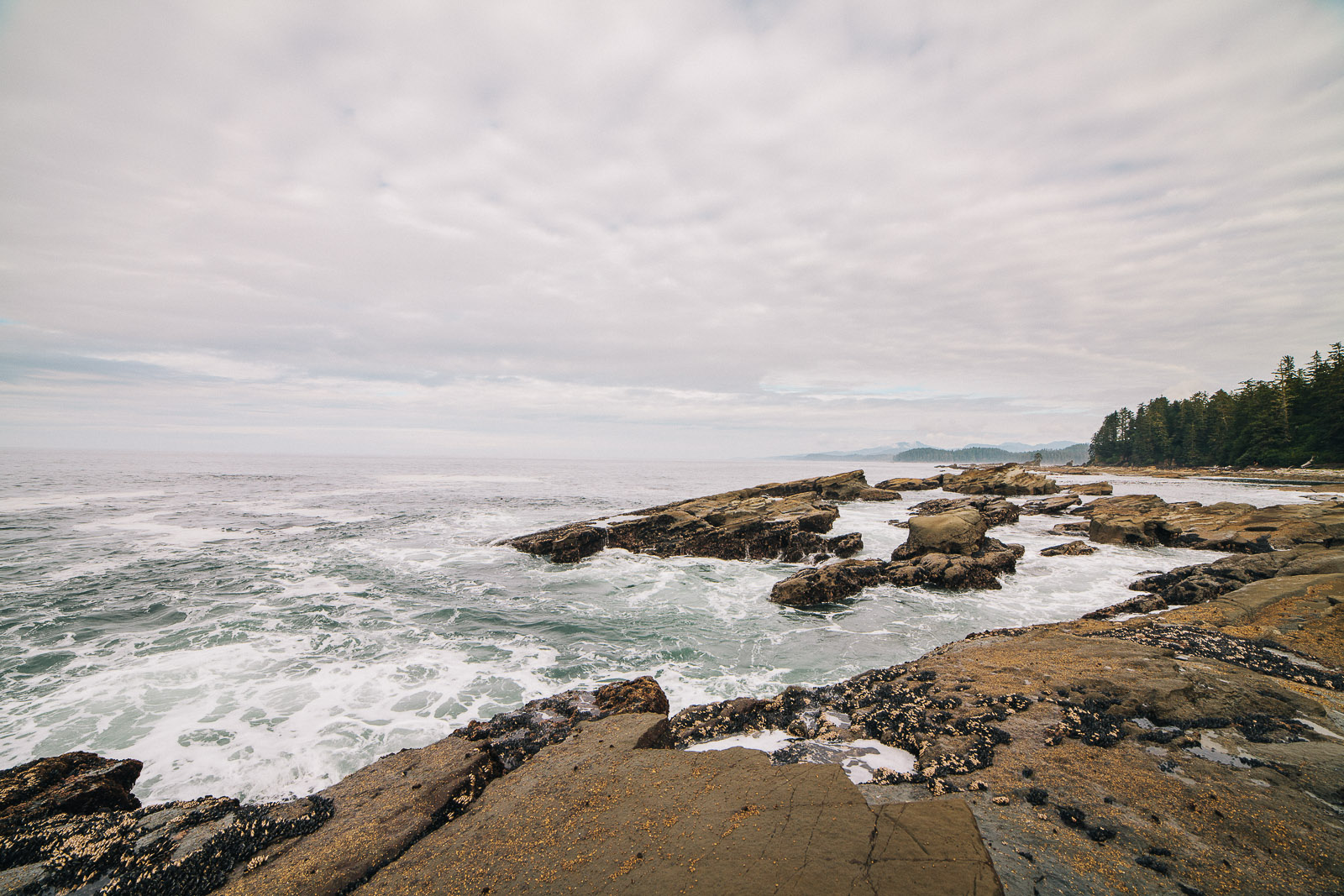west coast trail waves